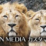 【WordPress:LION MEDIA】お問い合わせページを設置