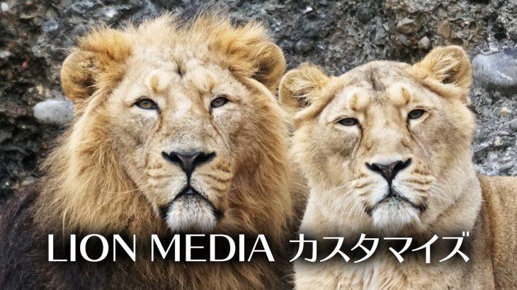 【WordPress:LION MEDIA】ブログにプライバシーポリシーのページを設置